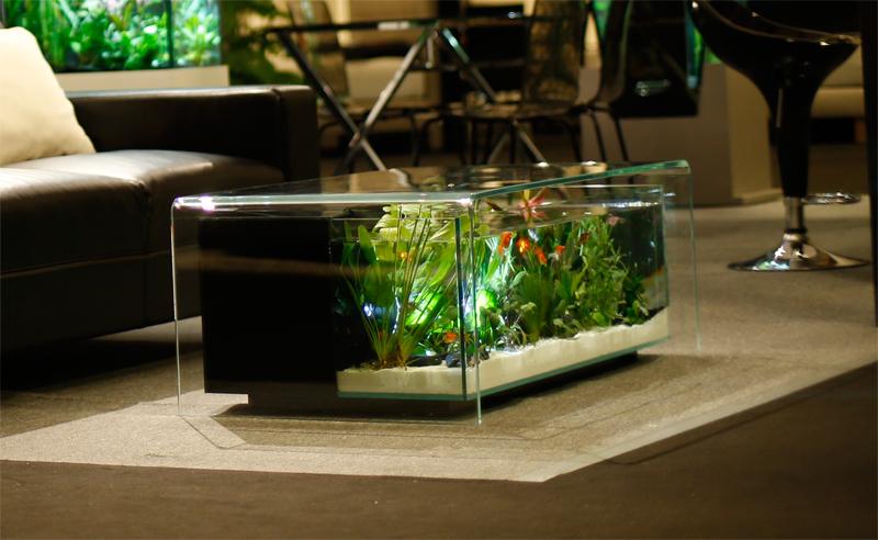 Maiao intro romain lourme - Table basse aquarium prix ...