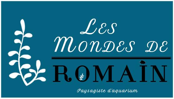Romain Lourme