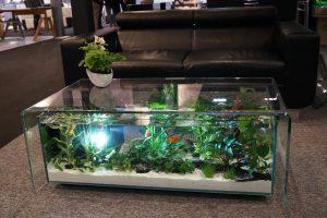 table de salon aquarium maiao