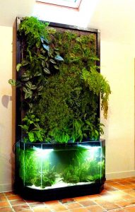 système aquaponique d'intérieur